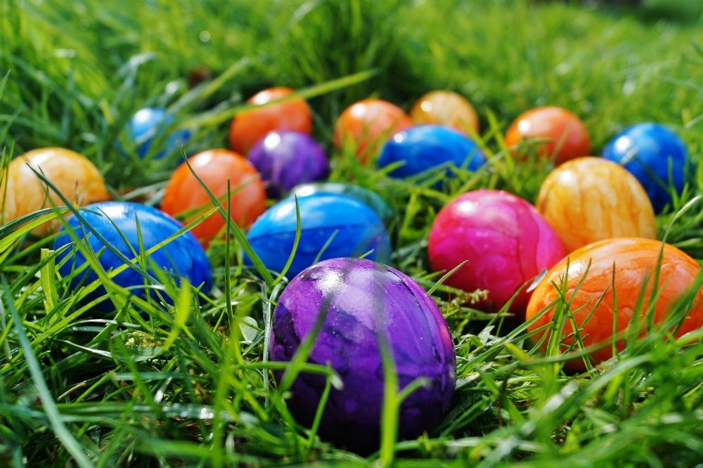 Here's our list of the best things to do this easter weekend in the Taunton and Somerset area, from doing an Easter egg hunt to visiting a food and drink fair