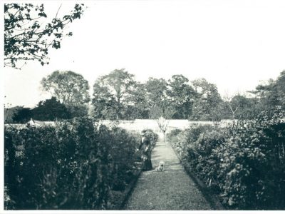Fig 7 Kitchen Garden looking north along main axis 1904 from the archives kitchen garden